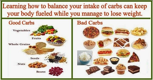 are carbs really that bad? – shredder gang